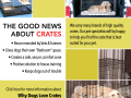 dogs-love-crates